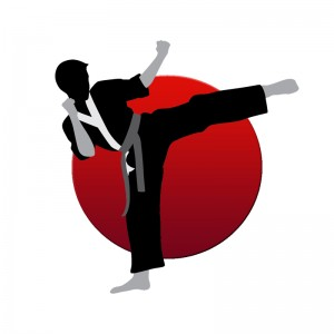 Design - Another karateka image with additional red circle background added
