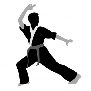 Design - Karateka image